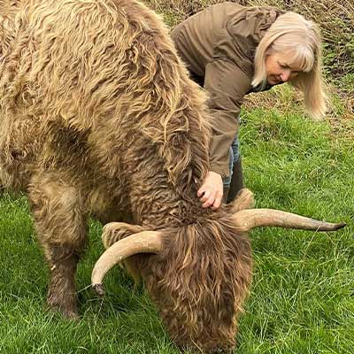 Tracey with Highland Cattle